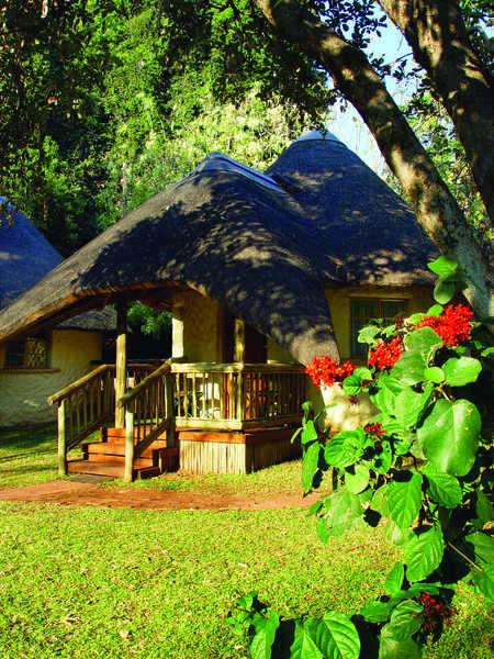chobe safari lodge on the banks of the chobe river. Black Bedroom Furniture Sets. Home Design Ideas