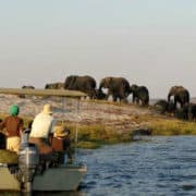 Chobe River Sunset Cruise