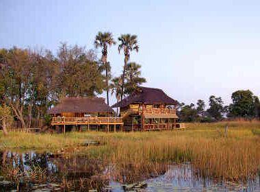 botswana luxury safari gunns camp okavango delta